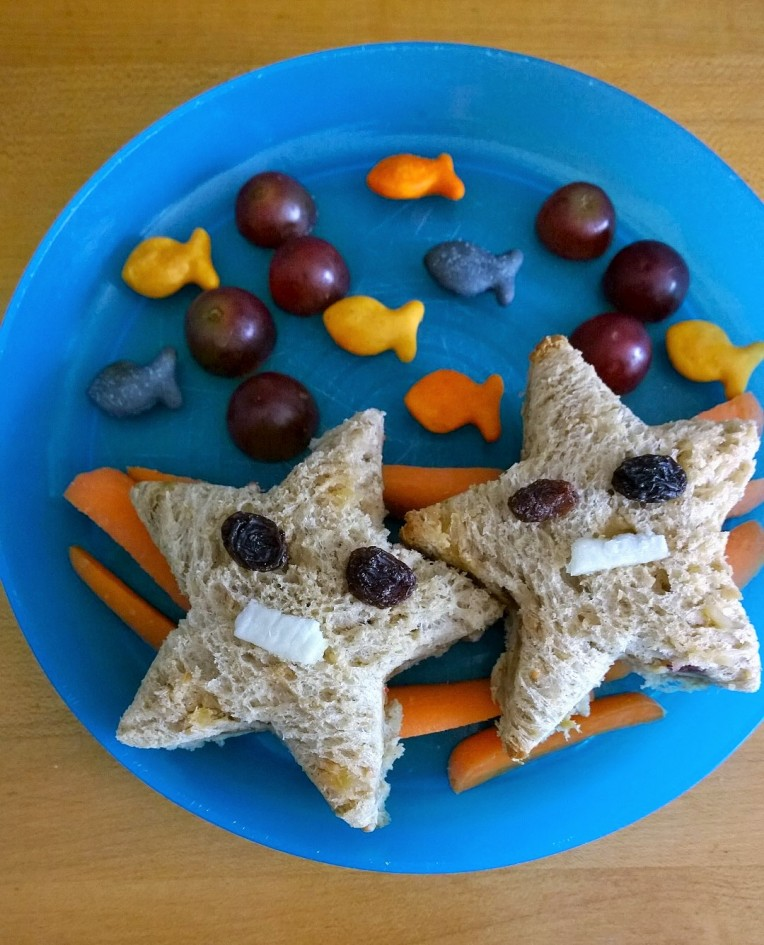 Star fish fun lunch - cupcakesandwildponies