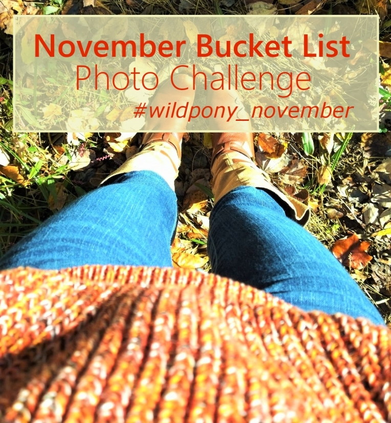 November Bucket List Photo Challenge #novemberbucketlist #wildpony_november #photochallenge - cupcakesandwildponies #blog