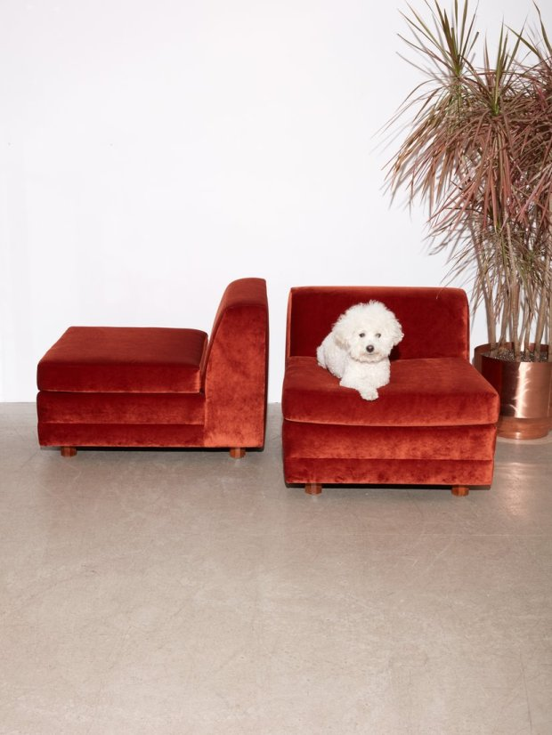 Rust Colored Lounge Chairs #interiordesign #rustcolor #fallcolors #design