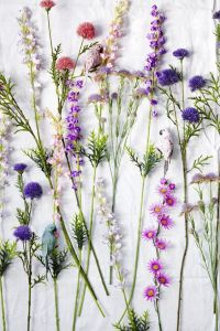 April color of the month: Lavender #purple #color #colorinspiration #designinspiration #wildflowers
