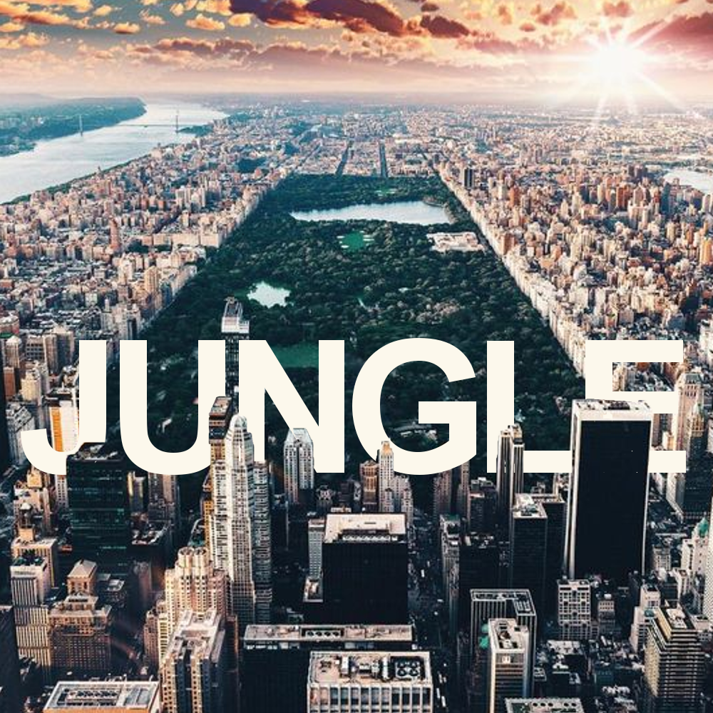 city view of central park - jungle text #typography #graphicdesign #cityscape #urbanjungle #jungle