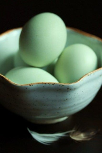 green eggs #greenaesthetic #seafoamgreen