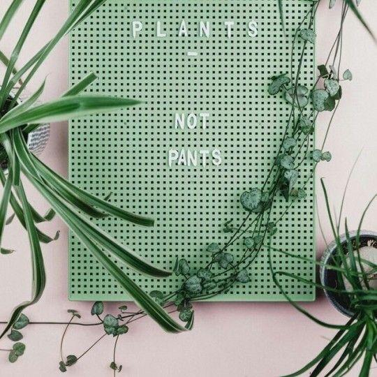 sea foam green letterboard #letterboard #greenaesthetic #seafoamgreen #plantsnotpants
